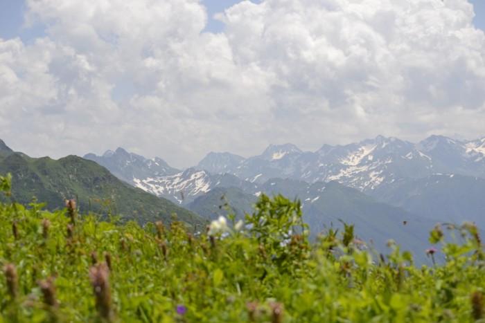 АбхазияGo - лето в горах